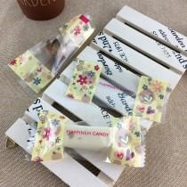 FJ-020 繽紛 單粒糖果袋 (500入/包)